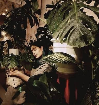 سانیا سالاری در گلخانهی کنار اتاقش /عکس