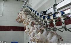 از گرانی شیر و مرغ تا مشکلات حوزه صنعت