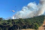 آتشسوزی در مناطق جنگلی استانبول ترکیه