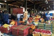 نقدینگی حاصل از فروش محصولات در سال 97 مهمترین عامل ثبات شرکت های کشاورزی