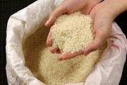 عامل اصلی اختلاف قیمت برنج از مزرعه تا سفره!