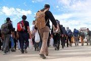 خبری خوش برای مشمولان دانشجوی ثبتنامی در ستاد اربعین