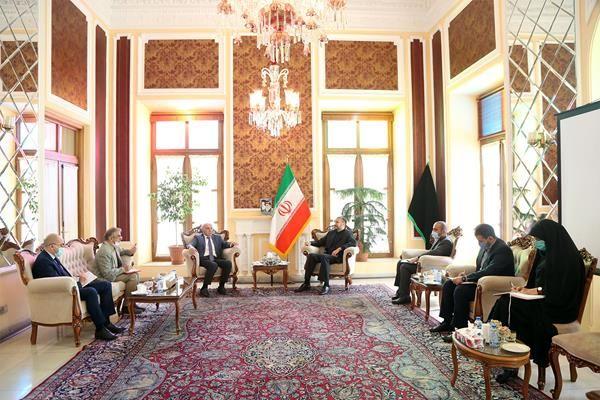 سفیر ارمنستان با امیرعبداللهیان دیدار کرد