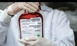 بانوان، رکورددار اهدای خون ایران