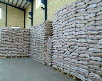 انتقاد شدید از واردات زمینی و آسمانی برنج در فصل برداشت