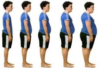 یک ترکیب گیاهی برای مقابله با چاقی