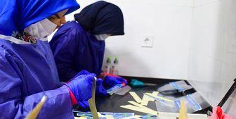 رشد ۳ برابری زنان کارآفرین در شهرکهای صنعتی کشور