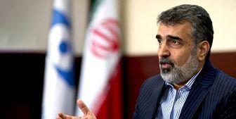 کمالوندی: ذخایر اورانیوم ۲۰ درصد ایران به ۵۵ کیلوگرم رسید