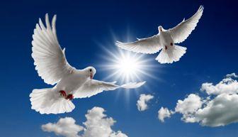 با انجام این کارها، امام کاظم(ع) خیر دنیا و آخرتتان را تضمین می فرمایند