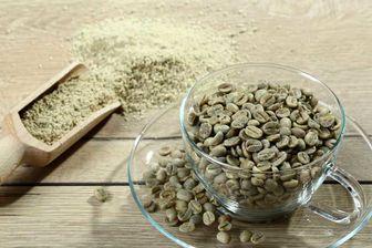 از خواص قهوه سبز چه میدانید+ بهترین روش تهیه