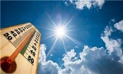 گرمای شدید در <a class='no-color' href='http://newsfa.ir/'> ژاپن </a> جان ۵ نفر را گرفت