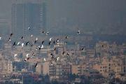 تداوم آلودگی هوای پایتخت طی شبانه روز گذشته