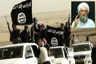 چرخش مواضع القاعده به نفع داعش