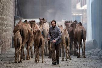 اهمیت بالای طراحی لباسها در فیلم سینمایی «روز بلوا»