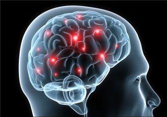 هورمونی که مغز را مردانه و زنانه میکند