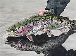 مضرات خوردن بیش از حد ماهی