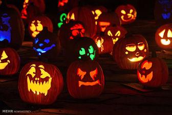 جشن هالووین در مدارس پایتخت!؟