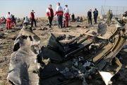 «کمیسیون حقوق عامه» پیگیر پرونده جانباختگان سقوط هواپیما شد