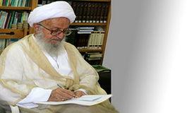 آیت الله مکارم شیرازی: باید فکری برای پراید کرد