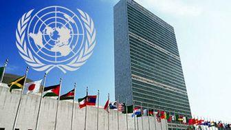 ابراز نگرانی سازمان ملل درباره اقدامات ترامپ