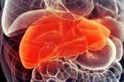 تامین سلامتی کبد با داروهای گیاهی