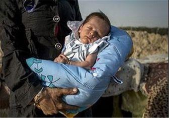 سرنوشت نوزادان فروخته شده در هالهای از ابهام