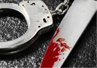 همسرکشی با ضربات متعدد چاقو