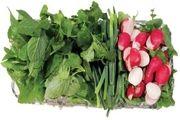 هفت گیاه تصفیهکننده خون را بشناسید