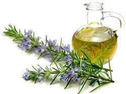 این گیاه در درمان ناراحتیهای گوارشی معجزه می کند