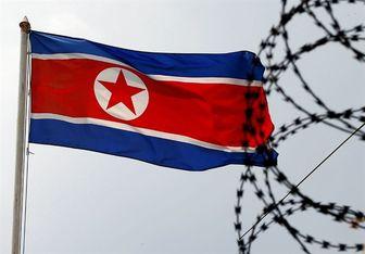 کره شمالی: زمستان عربی و دمکراسی آمریکایی جز خونریزی نیست