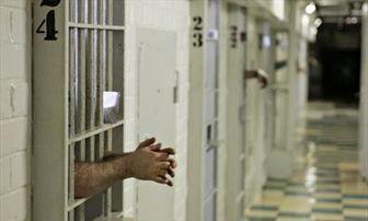 تاکید هیات دولت بر حبسزدایی