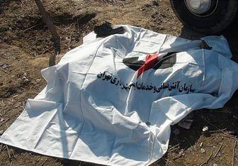 عاملان قتل منطقه نامجوی تهران به دام افتادند