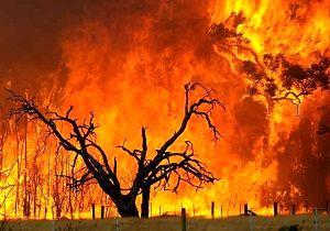 آتش واشنگتن را فرا گرفت