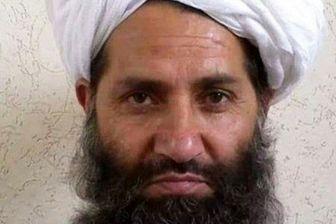 پیشنهاد سرکرده طالبان به آمریکا