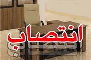 انتصاب جدید در سازمان تبلیغات اسلامی
