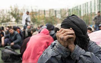 اخطار دادستانی با شهرداری تهران برای ساماندهی معتادان متجاهر