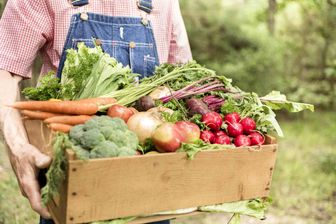 چرا باید محصولات ارگانیک استفاده کنید؟