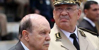 افشای سوء استفاده امارات از اعتراضات الجزایر