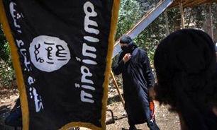 ادعای رویترز درباره نصب پرچم داعش در کوبانی