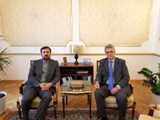 ملاقات سفرا و نمایندگان دائم ایران و آلمان نزد سازمان های بین المللی