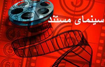 داوری مستندهای فجر در کنار آثار سینمایی