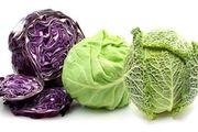 کلم منبع مغذی ویتامین سالم برای بدن