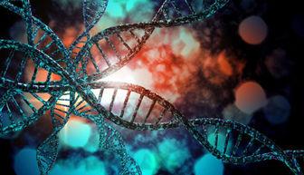 ژنتیک و نقش آن در پیشگیری از معلولیتها