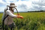 درآمد کشاورزان شهرستان سرایان ۱۵ میلیارد تومان کاهش یافته است