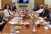 دیدار وزیر خارجه سوئد با سخنگوی جنبش انصارالله یمن