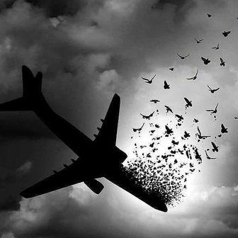 پیام تسلیت ورزش 11 در پی حادثۀ ناگوار هواپیمایی اوکراین