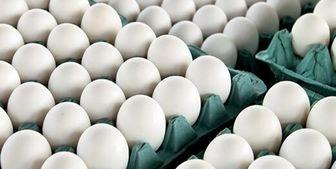 صف عجیب تخممرغ در ترکیه نه ایران فیلم