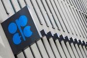 تولید اوپک در صورت افزایش قیمت نفت افزایش مییابد