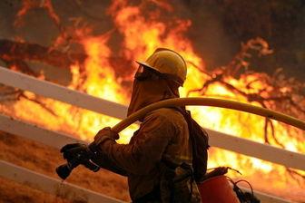 دامداران عامل اصلی آتشسوزی در آرژانتین