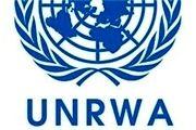 گریه مسئول سازمان ملل، خشم دولت مستعفی یمن را برانگیخت